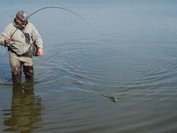http://fishingstock.ua/upload/iblock/1fb/1fb0905f6797b55f72914b40a274ab93.jpg