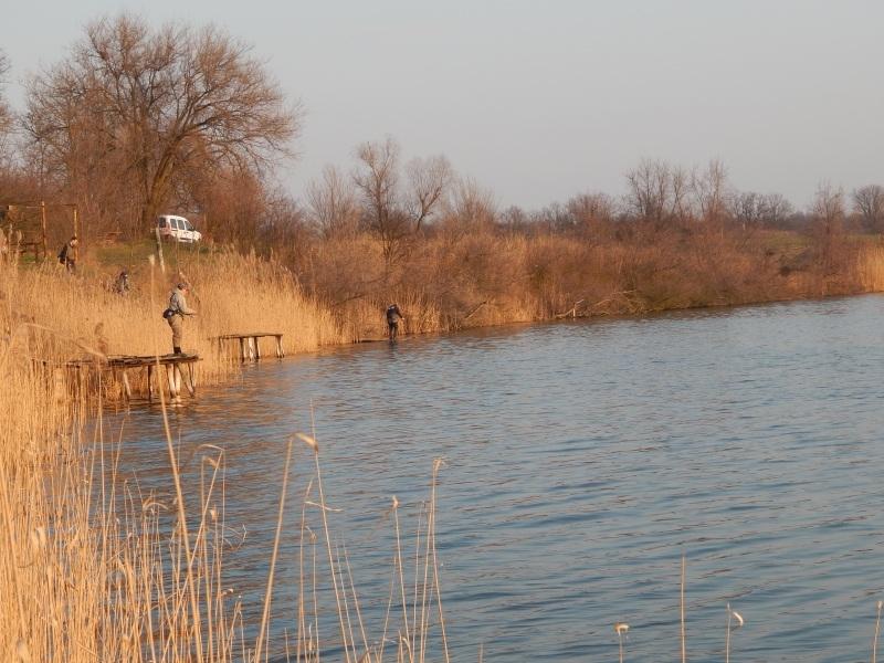 http://fishingstock.ua/upload/iblock/300/300c153c34353cb05adb6a249d5fb583.jpg
