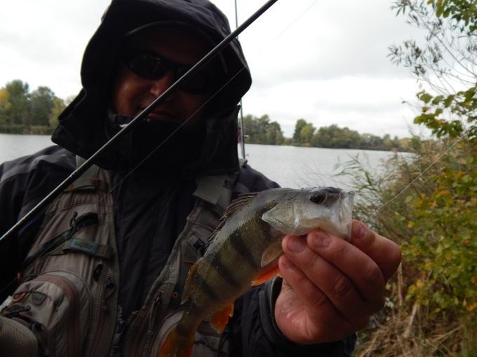 http://fishingstock.ua/upload/iblock/4f3/4f340cf7c338a069b0f4837d73f4b70d.jpg