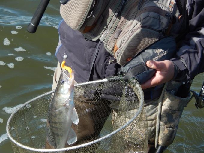 http://fishingstock.ua/upload/iblock/856/85675ab4e2bde980567db7030a77b248.jpg