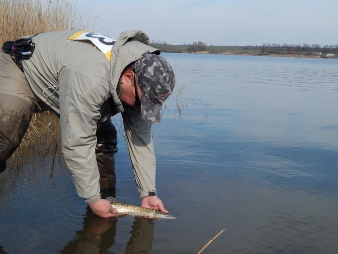 http://fishingstock.ua/upload/iblock/9dd/9dd39d3c72e2698586b01f835d00b8cc.jpg