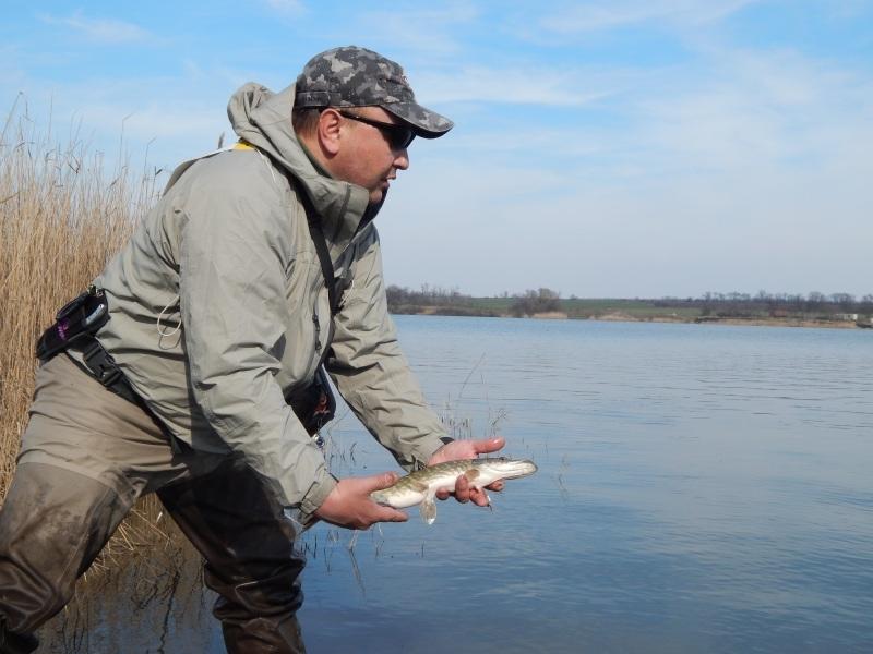 http://fishingstock.ua/upload/iblock/bf2/bf257e5d77b1b1927da0f46ae1e51c02.jpg