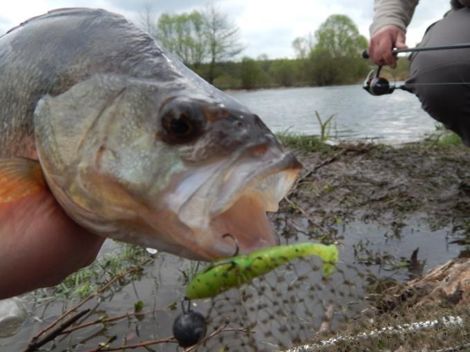 http://fishingstock.ua/upload/iblock/c0a/c0abfc35acdb64a97e08f5756f512838.jpg