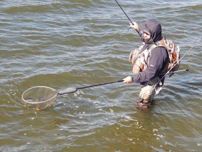 http://fishingstock.ua/upload/iblock/e5d/e5d885588886008448d7f52bc3644eab.jpg