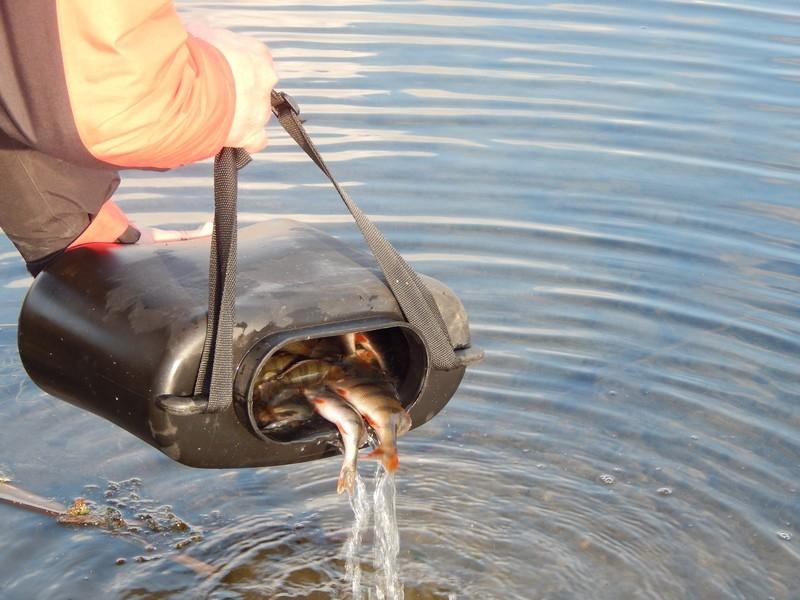 http://fishingstock.ua/upload/iblock/ee3/ee3d0fcde83c0b9c83a9005978c41c94.jpg